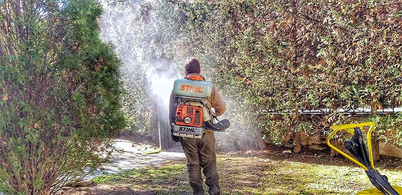 Fumigaciones y tratamientos - Escorial Green